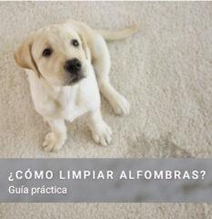 GUIA LIMPIEZA ALFOMBRAS