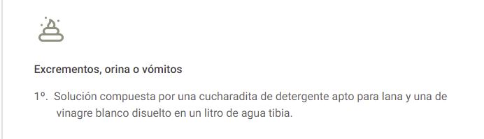 LIMPIZA DE ALFOMBRAS DE ESCREMENTOS, ORINA...